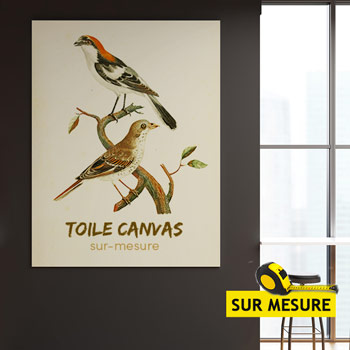 Toile Canvas Mate 320g
