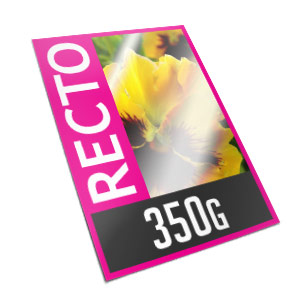 Carte recto - 350g