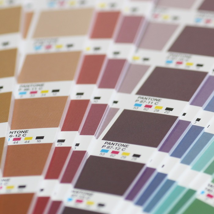 PANTONE® CMJN Color Guide Plus Series